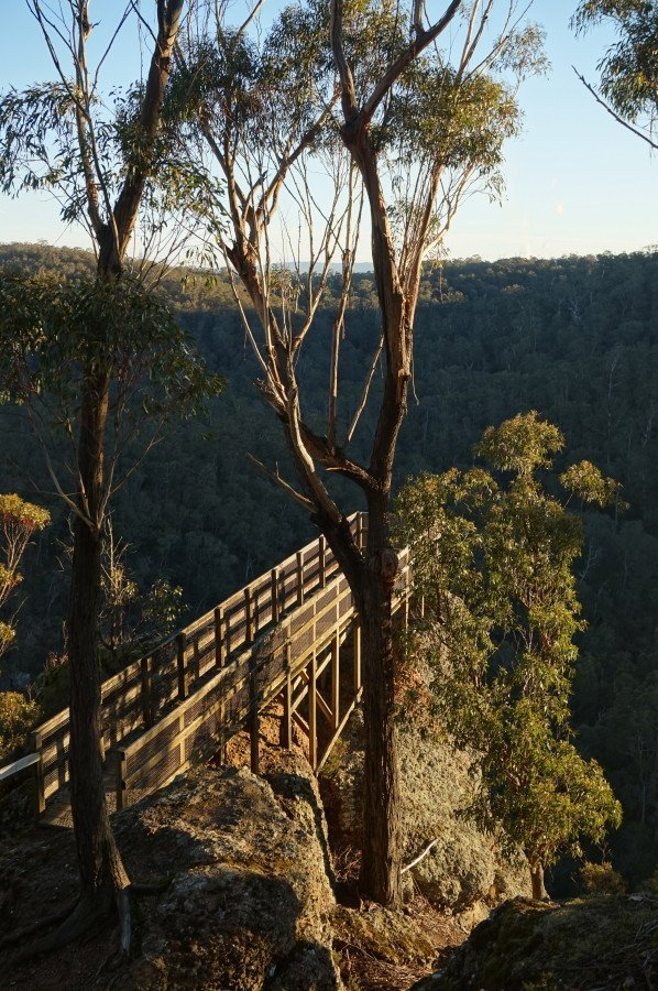 Petersons Lookout