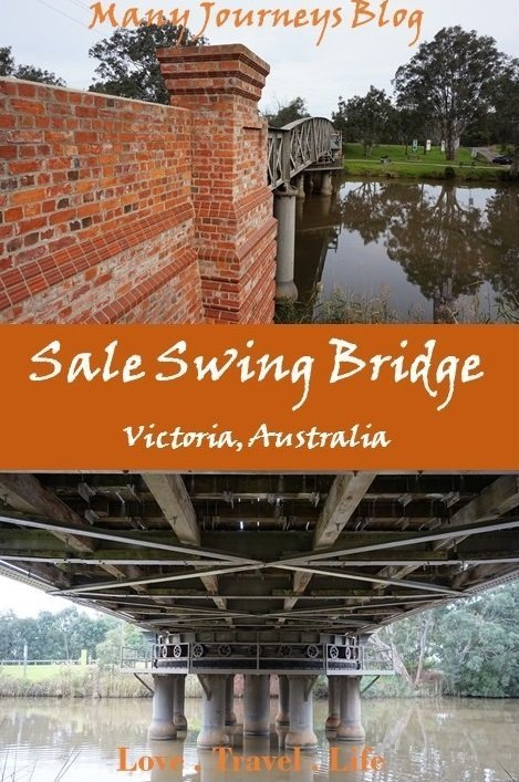 Sale Swing Bridge Pin2