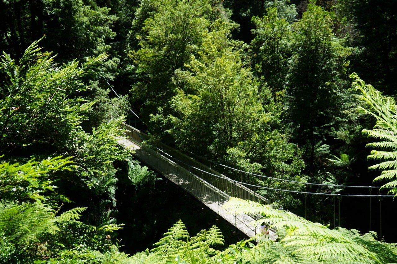 ferny-gully-suspension-bridge